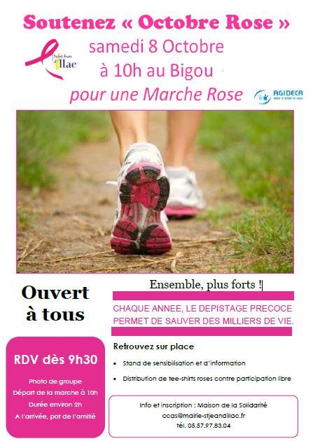 marche-rose-association-pierre-favre-saint-jean-d-illac-programme