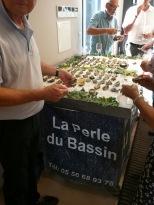 exposition massou larbre classic marcassus association pierre favre institut bergonie16